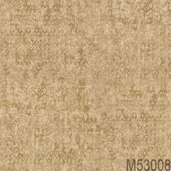 M53008