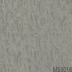 M53016