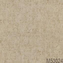 M53024