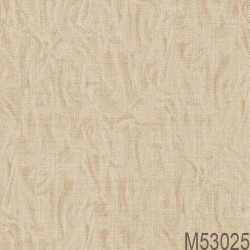 M53025