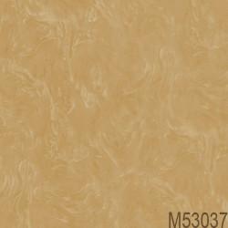M53037