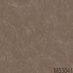M53041