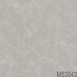 M53043